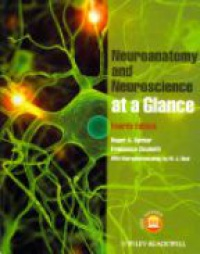 Roger A. Barker,Francesca Cicchetti - Neuroanatomy and Neuroscience at a Glance
