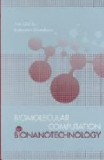 Biomolecular Computation for Bionanotechnology