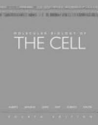 Bruce Alberts,Alexander Johnson,Julian Lewis,Martin Raff,Keith Roberts,Peter Walter - Molecular Biology of the Cell