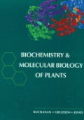 Biochemistry and Molecular Biology Plants